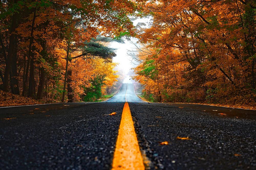 Fall Foliage Routes in Virginia
